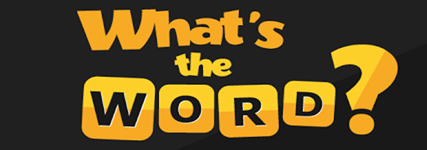 what s the word answers